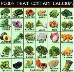 FoodswithCalcium